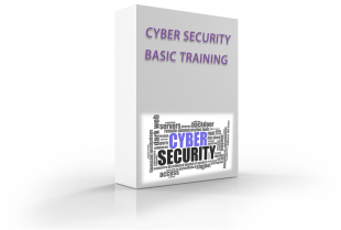 Cyber Security course box2 310x209 - Cyber Security Basic Training
